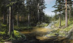 Река Боровая